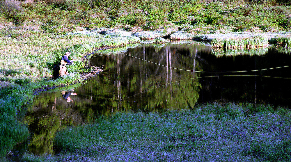 A fly fisherman casts his fly line across a beaver pond in the central Rocky Mountains