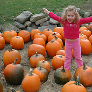5 year old girl celebrates among the pumpkins at a farm in Massachusetts