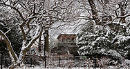 A snowy world near The Castle and Shakepeare Garden in Central Park