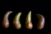 four Pears on black background