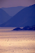 Image of windsurfers in the Columbia River Gorge, Washington, Pacific Northwest