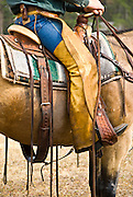 Cowboy on horse at Elkhorn Dude Ranch, Montana.  Close up of saddle rig.