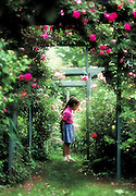 Young girl stops to smell a flower in a rose garden.