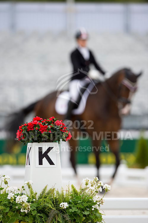 Roberta Sheffield, (CAN), Bindro T - Individual Test Grade III Para Dressage - Alltech FEI World Equestrian Games&trade; 2014 - Normandy, France.<br /> &copy; Hippo Foto Team - Jon Stroud <br /> 25/06/14