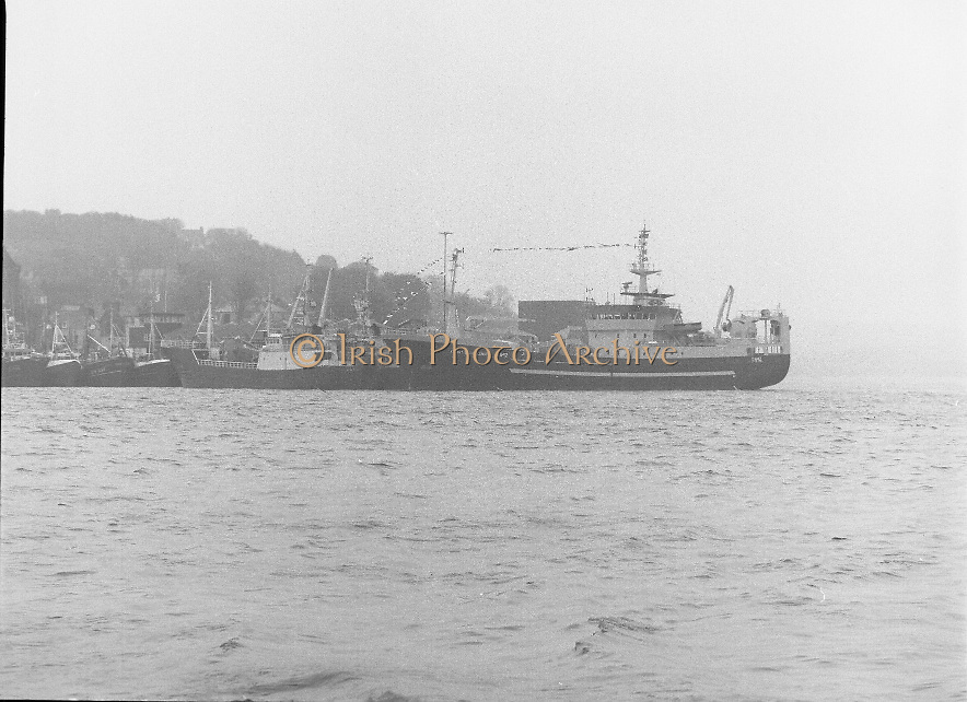 """Supertrawler arrives at Killybegs..1986..17.05.1986..05.17.1986..17th May 1986..""""Atlantic Challenge"""" the new IR£6million supertrawler,the flag ship of the Irish fishing fleet arrived at Killybegs today. The vessel was built for Killybegs' Enterprises in Bergen,Norway. Killybegs' Enterprises also have """"Western Viking"""".""""Jasper Sea"""" and""""Silver King""""supertrawlers in their fleet..The vessel will be skippered by Mr Martin Howley who originally trained with B.I.M.s National Fishery Training Centre, Greencastle..The company plans to fish for non-quota stocks such as Blue Whiting and Horse Mackerel,her fishing pattern will lessen dependence on mackerel as quotas are low for the Irish fleet..A view from across the harbour of super trawler """"Atlantic Challenge as she lies moored."""