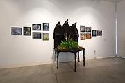 Installation view of A.J. Nordhagen's exhibition
