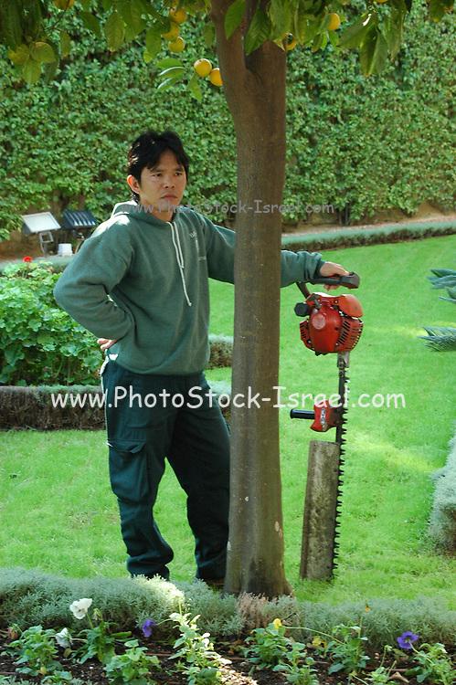 Gardener maintaining a garden