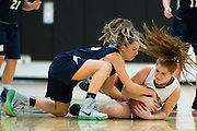 Newton North senior Sydney Beatrise fights Needham freshman Chloe Newman for the ball in their game at Newton North High School, January 15, 2016.