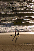 The Nort Sea glittering in the evening sun.