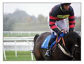 Horse Racing at Huntingdon Racecourse. 3-11-2008