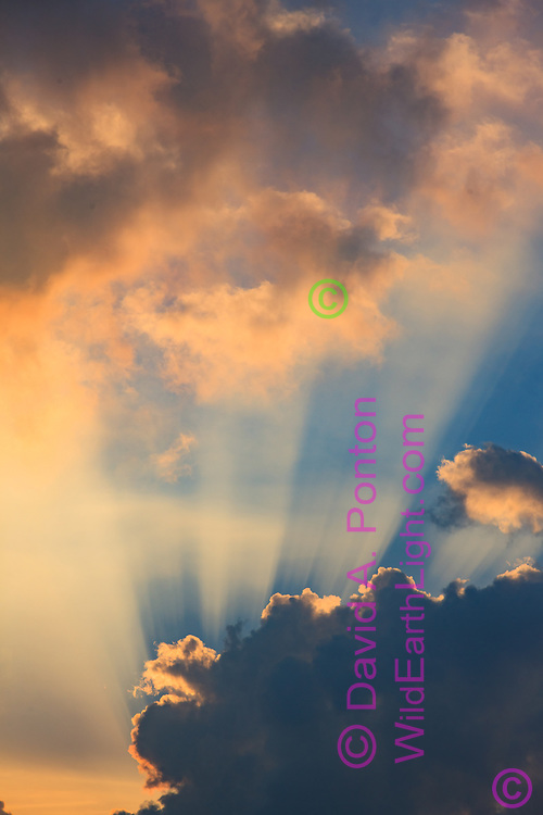 Sunrays formed by breaking clouds and misty atmosphere over the Pacific Ocean, © 2010 David A. Ponton