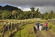 Volcan, Chiriqui. ©Victoria Murillo/istmophoto