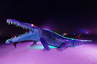 Niloticus<br /> by: Peter Hazel<br /> from: Reno, NV<br /> year: 2019<br /> <br /> Niloticus is a 40 foot long mosaic crocodile that invites visitors to climb on top of him. His eyes, teeth, and osteoderms will light up in the night.<br /> <br /> Contact: peter@peterhazel.com<br /> <br /> https://burningman.org/event/brc/2019-art-installations/?yyyy=&artType=H#a2I0V000001AW2iUAG