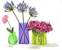 flowers in bright neon vases