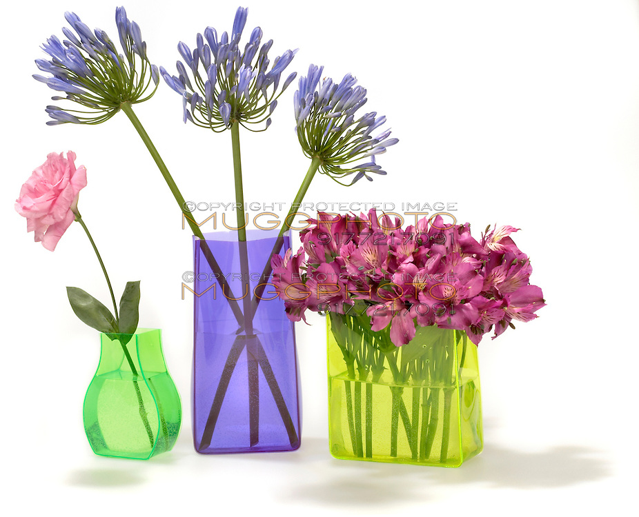 flowers in bright neon vases