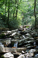 Great Smoky Mountain National Park  River,