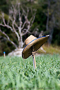 A farmers straw hat is resting on a wooden stick on a farm near Pai, Thailand.