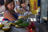 Nicaragua: Daily Life