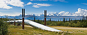The Trans Alaska Pipeline (or Alyeska Pipeline) crosses the Alaska Range and conveys crude oil 800 miles (1287 km) from Prudhoe Bay to Valdez, Alaska, USA. Heat Pipes conduct heat from the oil to aerial fins to avoid melting the permafrost. The 48-inch diameter (122 cm) pipeline is privately owned by the Alyeska Pipeline Service Company. The Trans Alaska Pipeline System (TAPS) includes The Pipeline, several hundred miles of feeder pipelines, 11 pump stations, and the Valdez Marine Terminal. Environmental, legal, and political debates followed the discovery of oil at Prudhoe Bay in 1968. After the 1973 oil crisis caused a sharp rise in oil prices in the United States and made exploration of the Prudhoe Bay oil field economically feasible, legislation removed legal challenges and the pipeline was built 1974-1977. Extreme cold, permafrost, and difficult terrain challenged builders. Tens of thousands of workers flocked to Alaska, causing a boomtown atmosphere in Valdez, Fairbanks, and Anchorage. Oil began flowing in 1977. The pipeline delivered the oil spilled by the huge 1989 Exxon Valdez oil tanker disaster, which caused environmental damage expected to last 20-30 years in Prince William Sound. Panorama stitched from 4 overlapping photos.