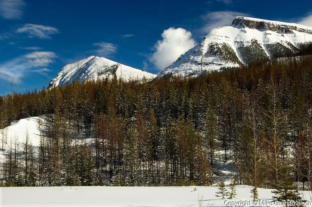 Near Vermilion Pass, Continental Divide. Storm Mountain, ridge on Mt. Ball, Mt. Stanley.<br /> Kootenay National Park<br /> British Columbia<br /> Canada