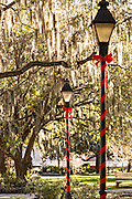 Christmas decorations on gas lamps in Forsyth Park Savannah, GA.