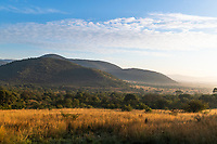 Rolling hills and dry winter grasslands, Pilanesberg Game Reserve, South Africa