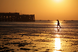 © Licensed to London News Pictures. 01/10/2015. Southsea, Hampshire, UK. A woman walking her dog on the beach at Southsea in Portsmouth enjoying the sunrise this morning, 1st October 2015, on what is set to be another dry and fine day in the south of England. Photo credit : Rob Arnold/LNP