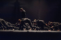 Part of Thomas des: See hte Music, Hear the Dance and choreographed by Crystal Pite, this piece is performed by six professional dancers form Kidd Pivot and 58 student dancers from London Contemporary Dance School and Central School of Ballet