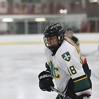Women's Ice Hockey: St. Norbert College Green Knights vs. Adrian College Bulldogs