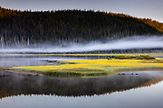 A layer of fog passes over Sparks Lake in Deschutes National Forest, Oregon. A small island in the lake is covered with yellow spear-leaf arnica (Arnica longifolia) flowers.