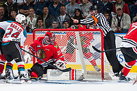 KELOWNA, CANADA - MAY 1: Adin Hill #31 of Portland Winterhawks defends the net against the Kelowna Rockets on May 1, 2015 at Prospera Place in Kelowna, British Columbia, Canada.  (Photo by Marissa Baecker/Getty Images)  *** Local Caption *** Adin Hill;