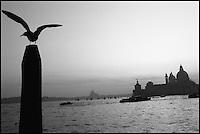 Hiver à Venise. // Winter in Venice.
