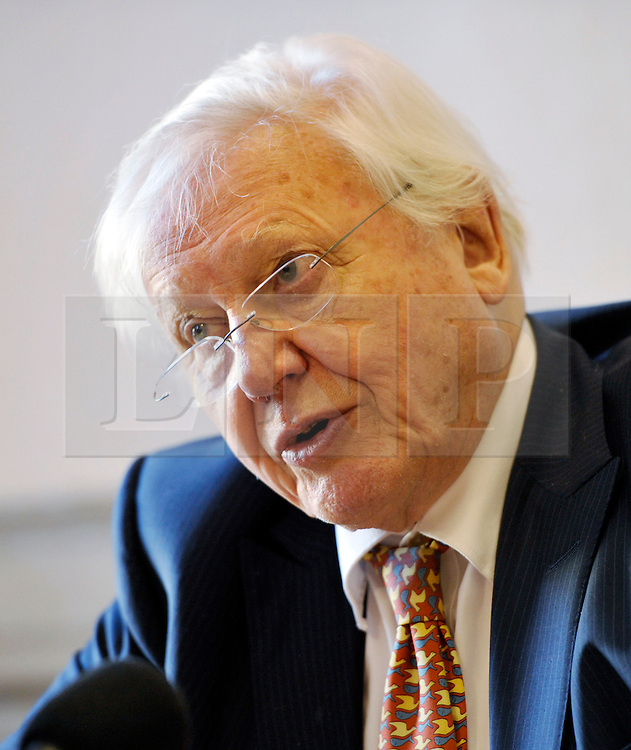 © Licensed to London News Pictures. 17/12/2013; Bristol, UK.  Bristol gives the city's highest honour to Sir David Attenborough at an extraordinary full council meeting on Tuesday, December 17.  Sir David Attenborough is widely recognised as the world's greatest natural history programme maker. The decision to award the Freedom of the City follows a close association between Bristol, the BBC's Natural History Unit (based in Bristol) and the renowned naturalist and film-maker. Freedom of the City will mean that Sir David Attenborough's name is added to the Roll of Honorary Freemen of the City. Sir David Attenborough's career as a naturalist and broadcaster has spanned nearly six decades and there are very few places on the globe he has not visited. 17 December 2013.<br /> Photo credit : Simon Chapman/LNP