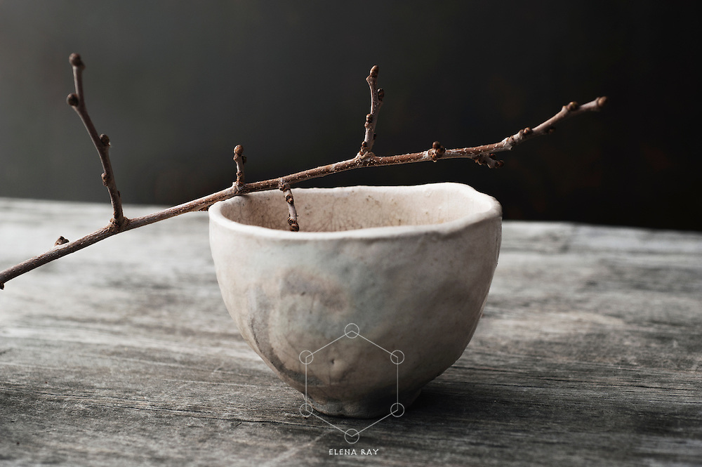 A budding twig resting on an simple bowl in a rustic setting. Still Life Photography.