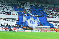 Tifo Montpellier - 08.03.2015 -  Montpellier / Lyon  -  28eme journee de Ligue 1 <br />