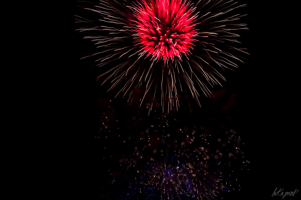 Fire In Bloom 2017 - Firework Photos