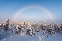 Regenbogen über den Schneefiguren in Iivaara in Lappland, Finnland