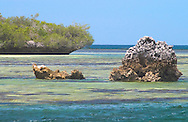 Aldabra Atoll, The Seychelles<br /> 'champignon' rock formations<br /> and an emerald coloured lagoon<br /> c. Ellen Rooney