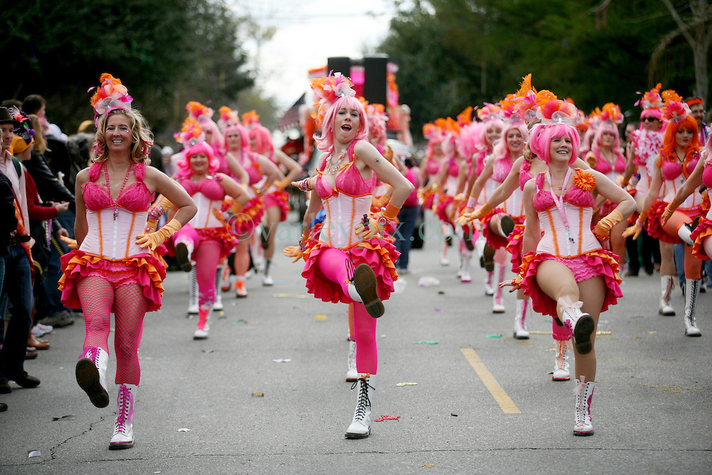 19 Feb 2012. New Orleans, Louisiana USA. .Mardi Gras. Members of the Pussy Footers dancing troupe join the Thoth parade making their way through the Uptown streets. .Photo; Charlie Varley