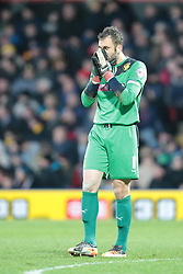 Watford's Manuel Almunia - Photo mandatory by-line: Nigel Pitts-Drake/JMP - Tel: Mobile: 07966 386802 11/01/2014 - SPORT - FOOTBALL - Vicarage Road - Watford - Watford v Reading - Sky Bet Championship