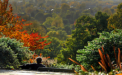 © Licensed to London News Pictures. 01/11/2011. Kew, UK. A man sits on a bench and looks at the view over Richmond. People enjoy the Autumn sunshine in Richmond Park today, 1st November 2011. Parts of the UK are experiencing higher than average temperature for the time of year.  Photo credit : Stephen Simpson/LNP