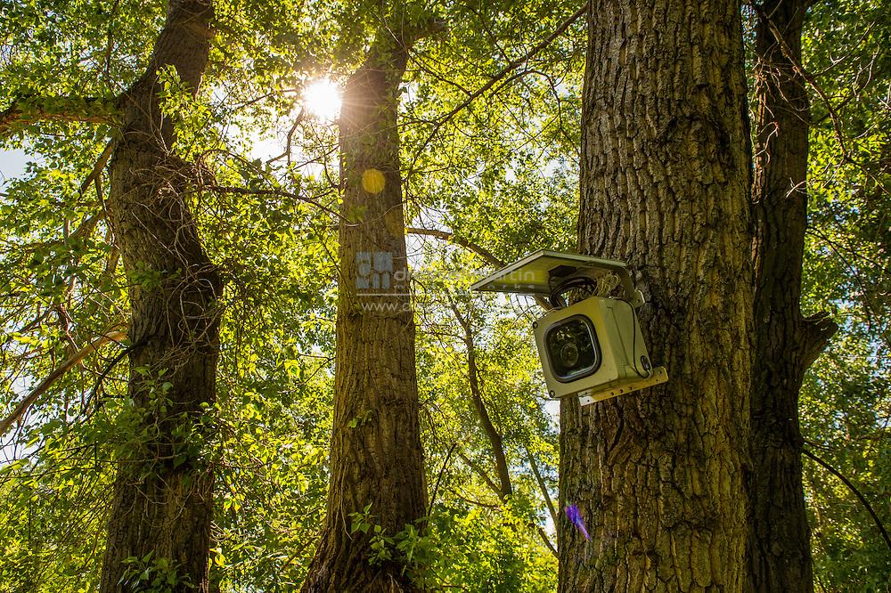 camera chatfield deer creek wetlands restoration