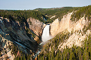 Lower falls of Yellowstone river in Yellowstone national park