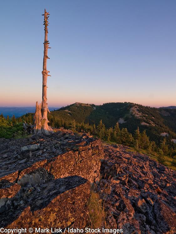 Latour Peak overlook. St. Joe National Forest.