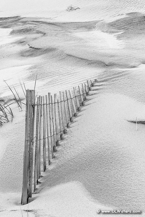 Black and white photo of sand fence and dune in Corolla NC.