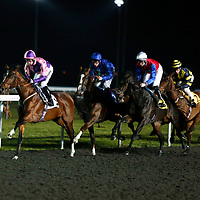 kempton 27th January
