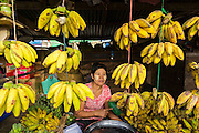 A woman sells bananas in the market in Pantanaw, a town in the Irrawaddy Delta (or Ayeyarwady Delta) in Myanmar. The region is Myanmar's largest rice producer, so its infrastructure of road transportation has been greatly developed during the 1990s and 2000s. Two thirds of the total arable land is under rice cultivation with a yield of about 2,000-2,500 kg per hectare. FIshing and aquaculture are also important economically. Because of the number of rivers and canals that crisscross the Delta, steamship service is widely available.