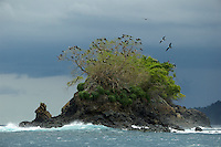 Island with roosting frigatebirds.<br />Off the Pacific coast of Panama near Coiba National Park