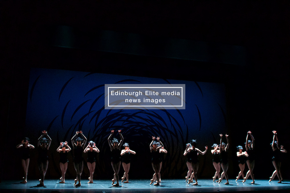 A 38-strong corps de ballet is transformed into a swarming, scurrying mass of insect-like creatures in the multi-award winning Emergence by Crystal Pite, which draws parallels between classical ballet's traditional hierarchies and the swarm intelligence of bees. Festival Theatre 18th August, 2016, (c) Brian Anderson | Edinburgh Elite media