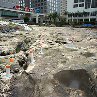 Ground view of post holes for an eleivated walkway in the Tequesta archaeology site at the Met Square development in downtown Miami. Site managed by Archaeological and Historical Conservancy (AHC).